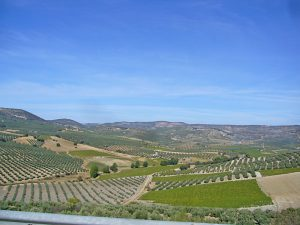 voyage-moto_espagne-spain_motorcycle-tour-andalousie-andalucia_2_antequera-granada-3
