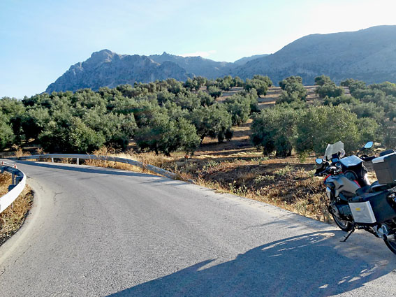 andalousie voyage moto Espagne olivier