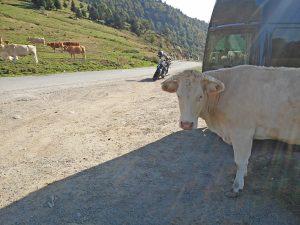 ne pas se tromper après la pause lors de ce voyage Pyrénées à moto